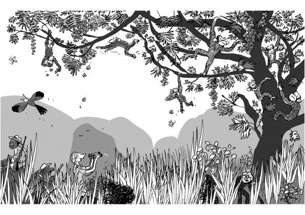 Illustration aus JANE GOODALL – Wer ist das?